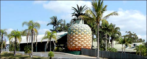 Travel to the Big Pineapple with our Brisbane car rental service.
