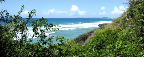 Travel to Burleigh Heads National Park with our Gold Coast car rental service.