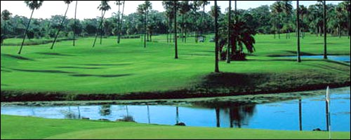 Travel to Gold Coast Golf Courses with our car hire Gold Coast service.