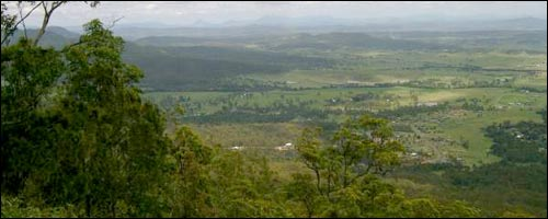 Travel to Mt Tamborine with our Gold Coast car hire service.