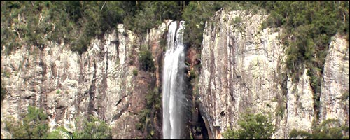 Travel to Springbrook National Park with our car hire Gold Coast Airport service.