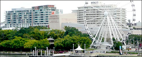 Travel to the Wheel of Brisbane with our car rental Brisbane service.